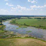 Delaware Marshes